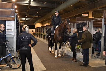 Ready to go! In the stabling area Hall C Jan Møller Christensen and some of his crew.