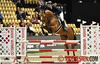 The 4-year-old Danish Warmblood showjumper stallion Vong's Brunello DWB TF had passed his 35-day performance test in the autumn 2018 and was in March 2019 awarded as champion in heat 2 among the showjumpers. He received the Elvin Rasmussen Challenge Cup and a breeder's medal in silver.